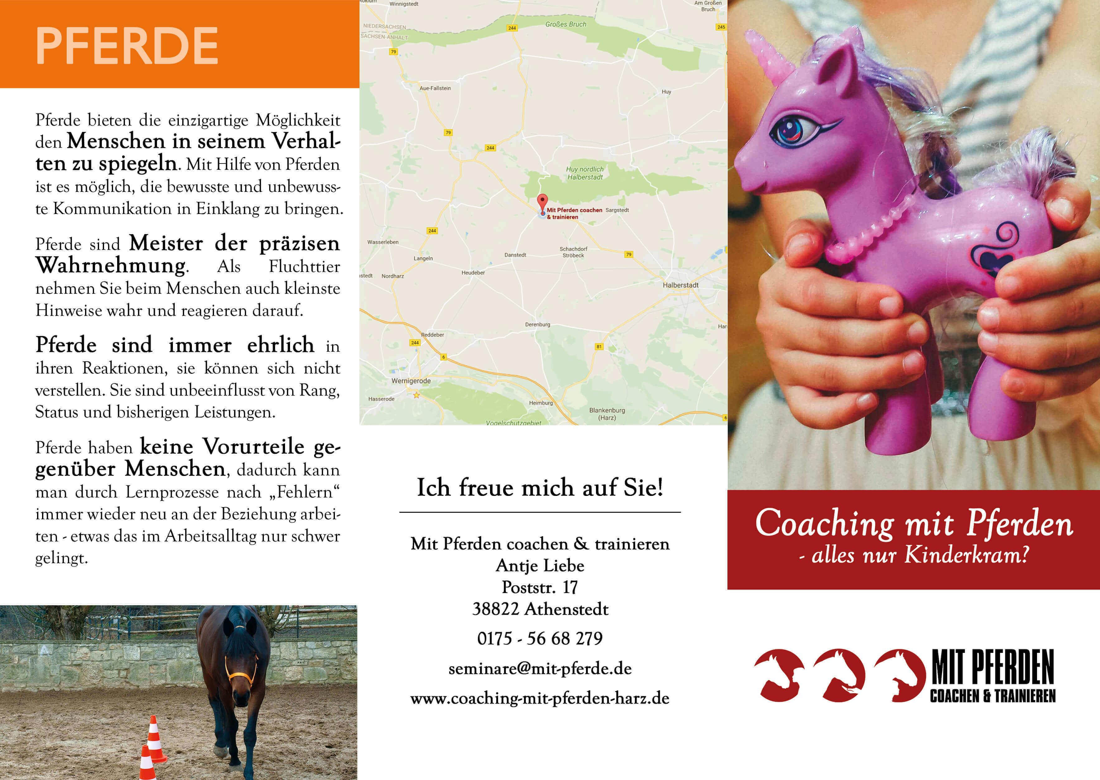 Faltflyer DINlang Mit Pferden coachen & trainieren