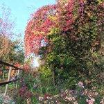 Herbst in Athenstedt | Coaching mit Pferden Harz