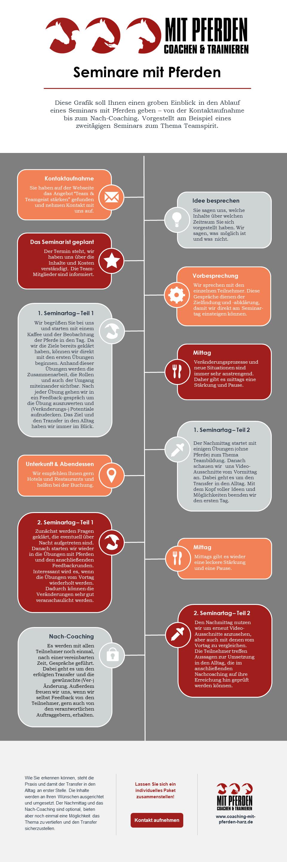 Infografik Ablauf von Seminaren mit Pferden - Coaching mit Pferden Harz
