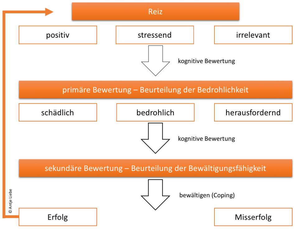 https://www.coaching-mit-pferden-harz.de/stressmodell-nach-lazarus/