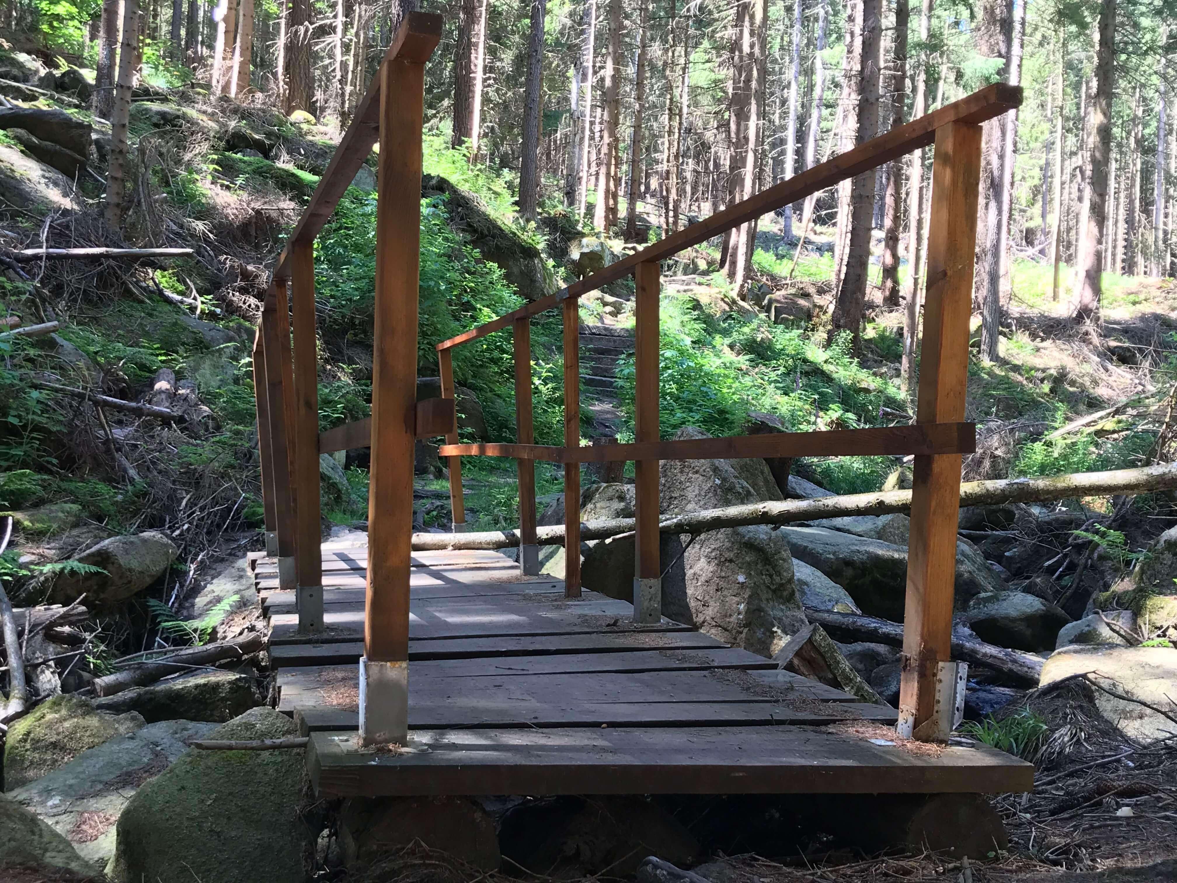Steinerne Renne - Harz