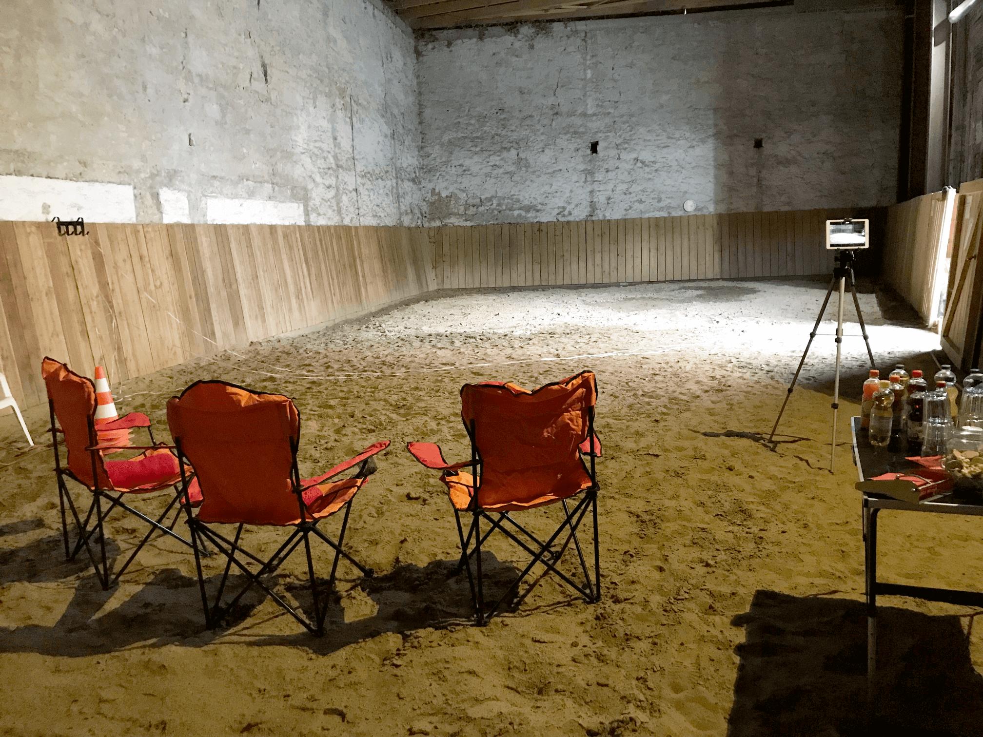 Team Event / Team Training | Coaching mit Pferden Harz, pferdegestütztes Coaching, Pferdegestütztes Training, Seminare mit Pferden