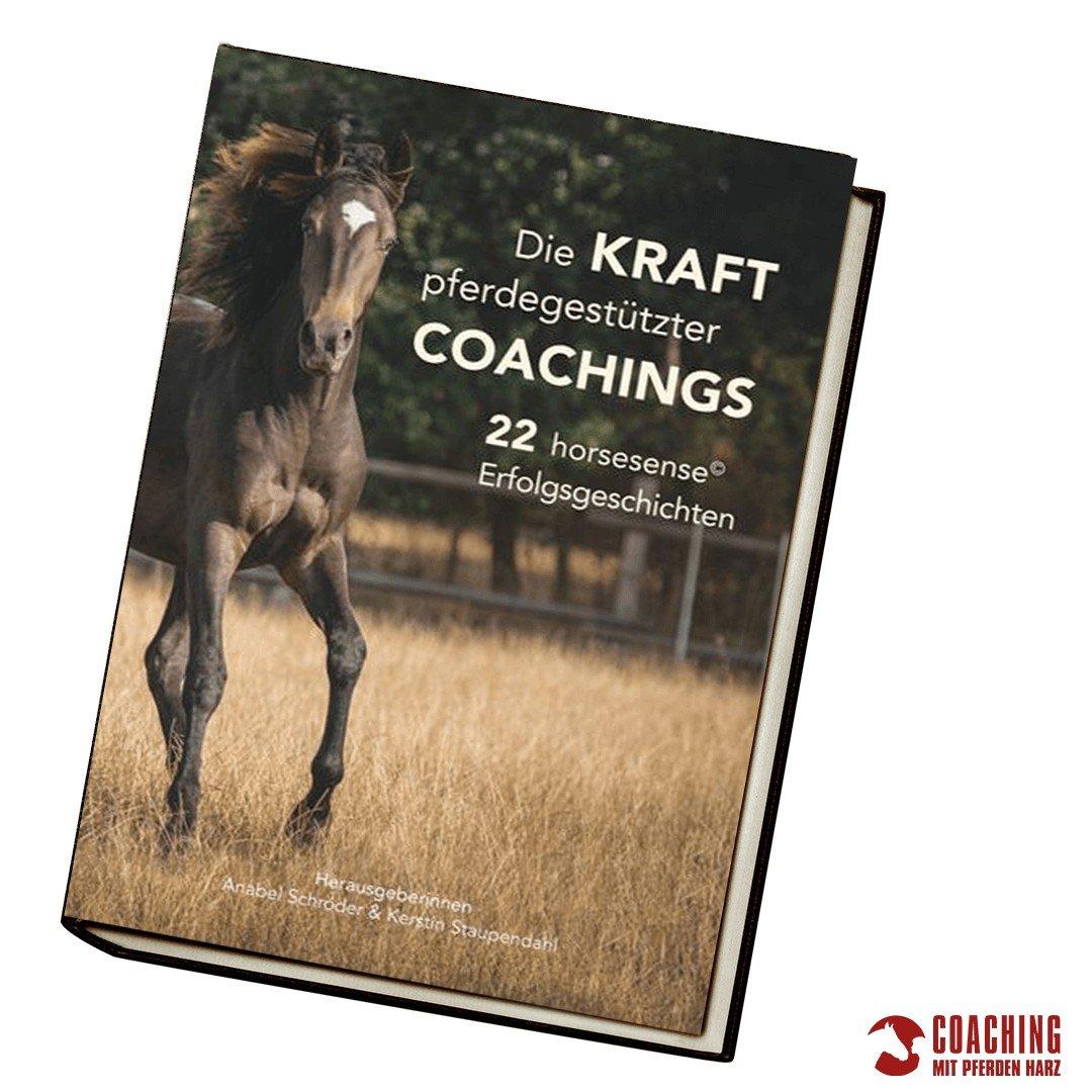 Die Kraft pferdegestützter Coachings – 22 horsesense© Erfolgsgeschichten