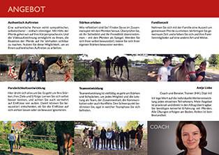 Flyer DINlang Coaching mit Pferden Harz